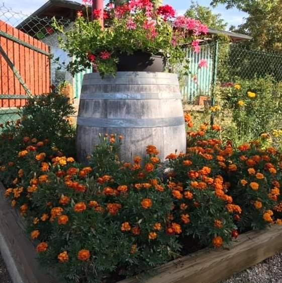 parterre-fleurs-camping-les-ceriselles